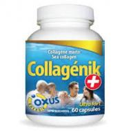 Collagenix + sea collagen of Oxus