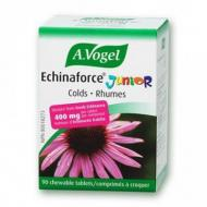 Echinaforce junior - rhume et grippe