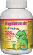 Multi-Vitamines Big Friends